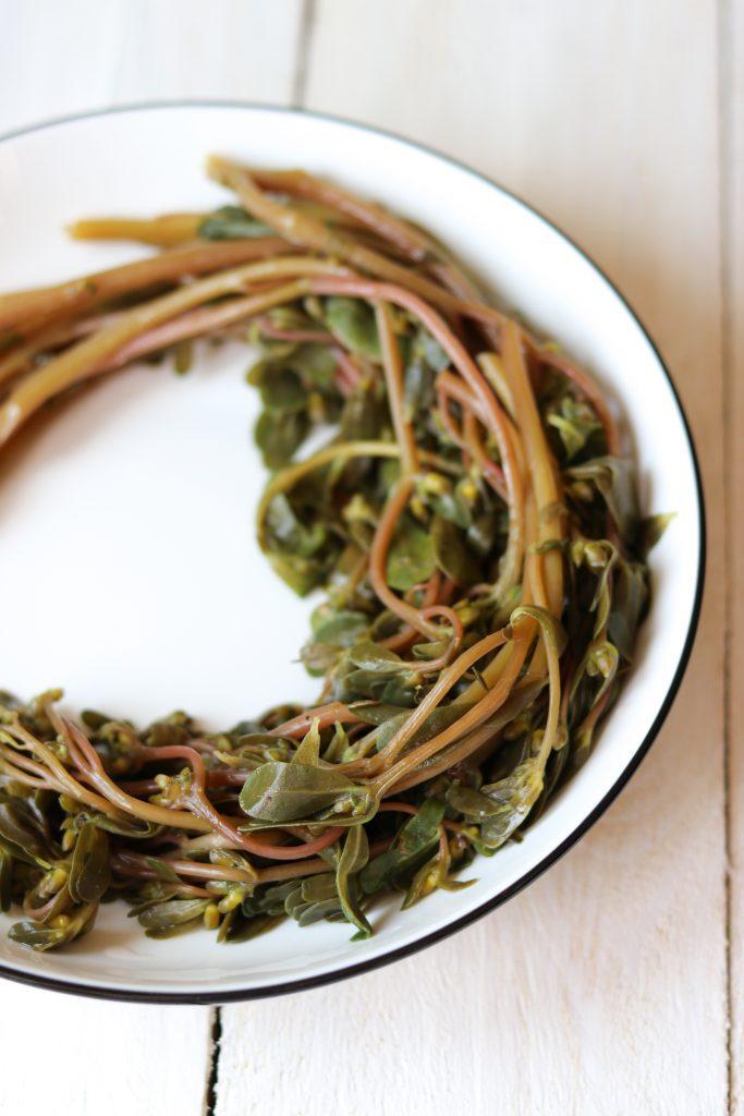 polikala portulaka glistrida horta dzika zielenina z krety pikle z portulaki przetwory